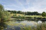 beryls-campsite-south-west-england-devon-large (2).jpg