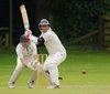 cricket-724617 copy.jpg