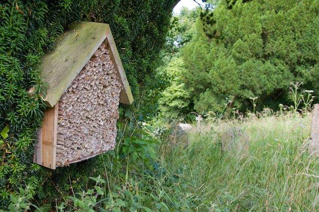bug box (Dave Kilbey).jpg