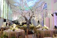 Orangery-Wedding_soundbydesign.png