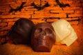 R Choc Skulls 2 copy.jpg