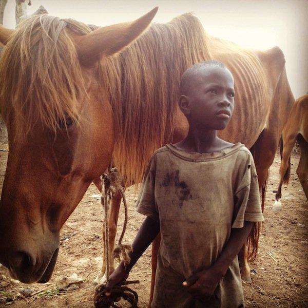 Boy and horse.jpeg