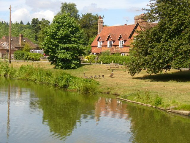 Hascombe's idyllic village pond threatened by Waverley BC