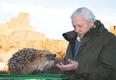 1.Sir David Attenborough and hedgehog scale model