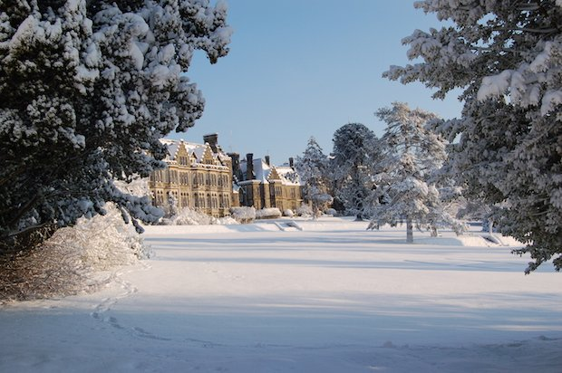 Winter at Ashdown Park copy.JPG