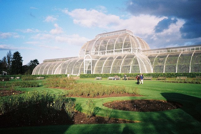 kew-gardens-wide-shot-of-the-glasshouse.jpg