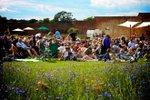 medicine-garden-sunset-cinema-outdoor-screening.jpg
