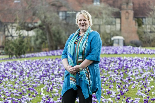 sue-biggs-field-of-flowers-royal-horticultural-society.jpg