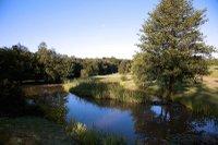 chiddingfold-golf-club.jpg