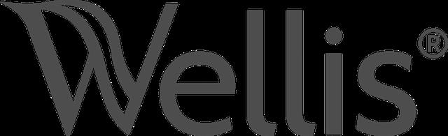 wellis-hot-tub-logo.png