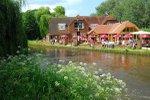 the-anchor-wisley-pub-beer-garden.jpg