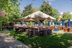 the-leather-bottle-pub-beer-garden-summerstown.jpg