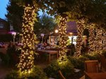 the-eagle-pub-beer-garden-shepherd's-bush.jpg