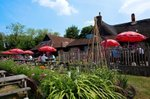 the-red-lion-pub-beer-garden-chalton.jpg