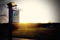 the-parrot-inn-pub-beer-garden-forest-green.jpg