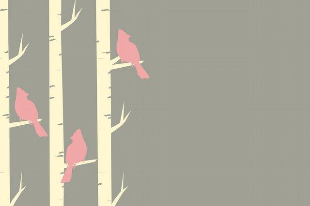 birds-1283829_1920.jpg