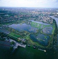 wetland-centre.jpg