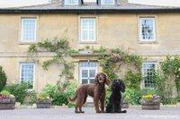 Wiltshire hotel.jpg