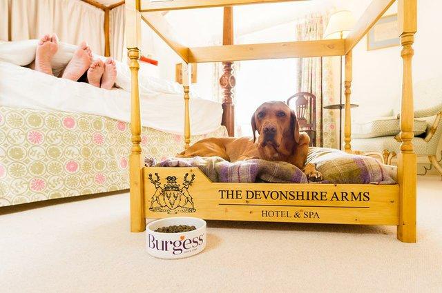 devonshire arms.jpg