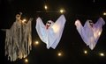 Halloween Activity Week at Birdworld (4).jpg