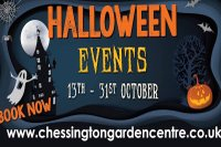 chessington garden centre.jpg