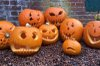 hatchlands pumpkins.jpg