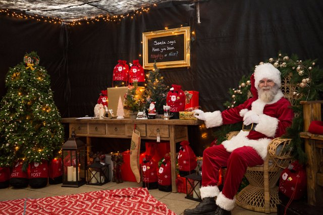 Father Christmas in Santa's Christmas Grotto at RHS Garden Wisley ©RHS. ....jpg