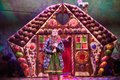 Hansel-and-Gretel-at-the-Rose-Theatre-(Green-Team).-Photo-by-Mark-Douet-_50A1217.jpg
