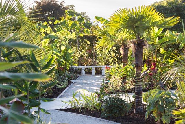 The Exotic Garden, RHS Garden Wisley ©RHS. Credit Line RHS, Joanna Kossak (KOT2018).jpg
