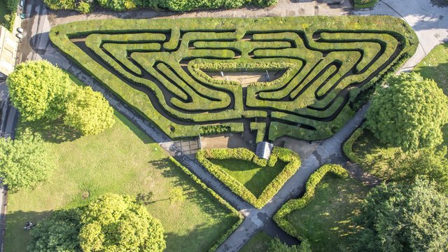 Aerial view of The Maze at Hampton Court Palace
