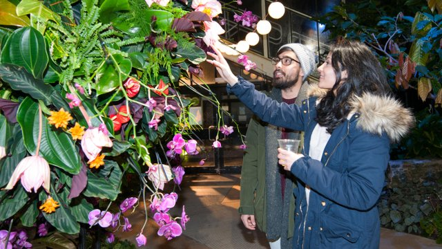 Couple exploring Orchid Festival - After Hours 2019 crop.jpg