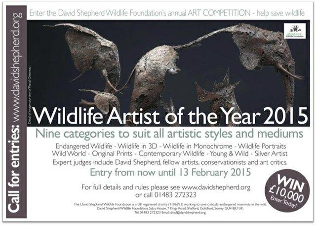 David Shepherd Wildlife Artist of the Year competition