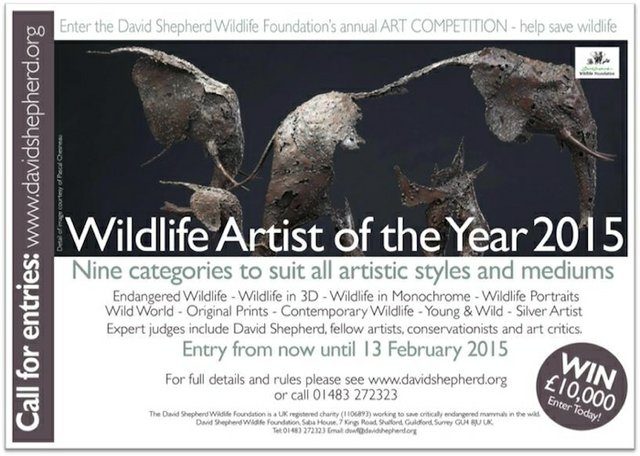 David Shepherd Wildlife Artist of the Year competition