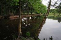 Black Pond.jpg