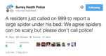 Surrey resident calls police to report spider under bed