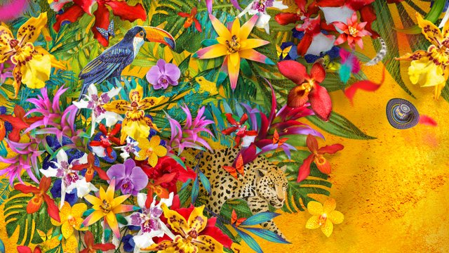 updated orchids-19-website-banner-2880x1620.jpg