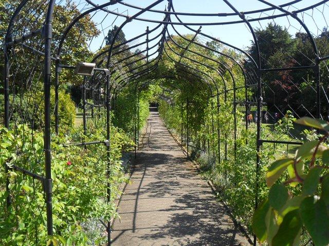 Surrey_-_Nonsuch_Park_flower_garden.jpg