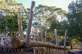 kew-gardens-children-park.jpg