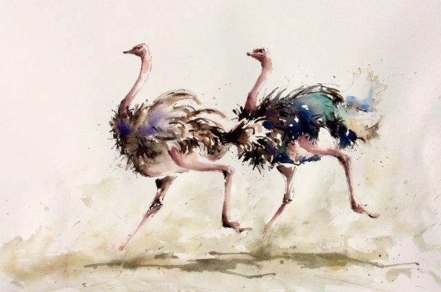 Ostrich Race 1.jpg