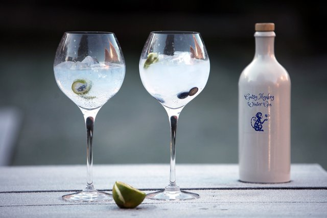 gin-kitchen.jpg