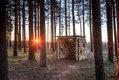 Forest Glassshouse-4.jpg