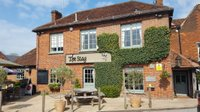 best-pub-surrey-godalming-the-stag-river.jpg