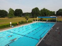 pools-park-london-surrey-outdoor-swimming.jpeg