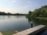 shepperton-open-water-swim.png
