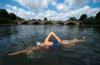 serpentine-outdoor-swimming-london.jpg