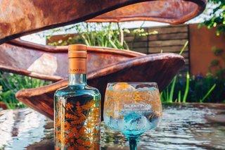 wine-tasting-vineyards-gin-surrey-london.png