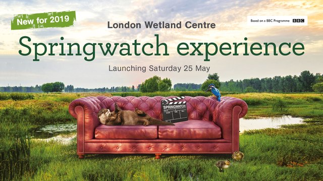 WWT Springwatch Sofa with credit badge.jpg