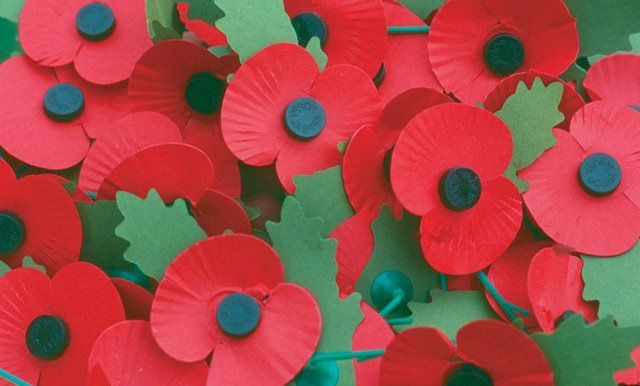 man and woman steal poppy collection tins