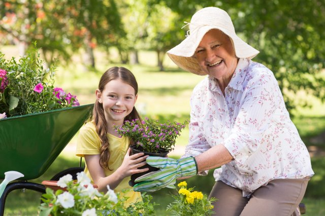 Gardening Memories - Squire's.jpg