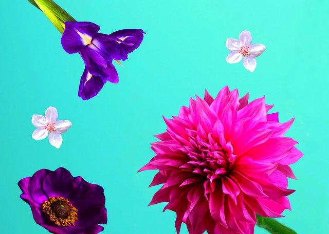 Flower home.jpg